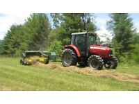 Excellent quality Hay and Straw bales FREE DELIVERY