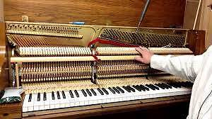 PIANO TUNING AND REPAIR. 18 YERAS EXPERIENCE. TOP SERVICE Harrington Park Camden Area Preview