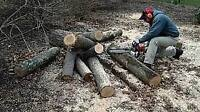 cut your logs into desired lengths to fit your wood stove