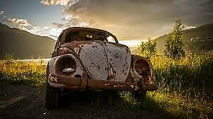 62 - 64 BEETLE wanted,  FOR SPECIAL PROJECT, ROUGH CONDITION OK
