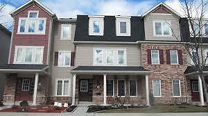 Immaculate Terrace Home For Rent