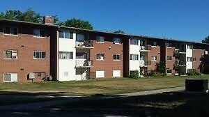 Spacious 2 bedroom apartment - Close to Amenities!