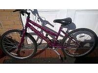 "Brittish Eagle Fire Fox,ladies mountain bike 26"" wheels 19"" frame.as new"