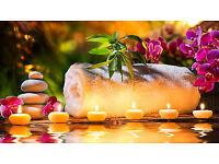 Swedish & Thai Massage Offered