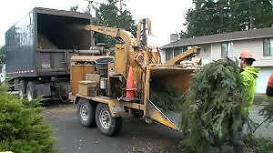 Tree Branch chipping disposal removal service
