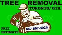 Tree removal 20% off. Insured.
