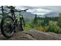 Mountain bike needed