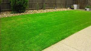 Kings Langley lawn mowing and handyman services Kings Langley Blacktown Area Preview