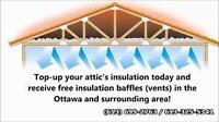VERMICULITE REMOVAL (613)699-2763