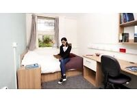 Student accommodation available