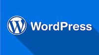 Will Create A Stunning Wordpress Website For You