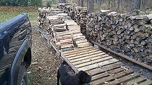 Firewood Storage Solution