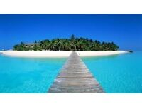 Travel partner wanted for foreign excursions-all expenses paid.