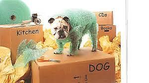 Moving?  Need help packing your things??