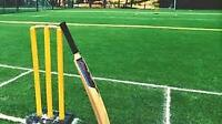 Calling casual cricket players (Calgary Downtown, SW)