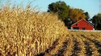 WANTED FARM LAND TO RENT