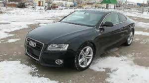 2008 Audi A5 Coupe (2 door)