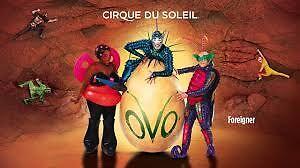Cirque Du Soleil: OVO, K-Rock Centre, Sat Dec 10 at 4:00