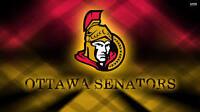 Cheap Senators Parking Passes for most games - 67% off - $5