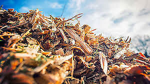 Looking for wood chips and composting materials, free dumping!