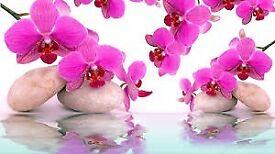 New Chinese Massage Shop In New Malden Near Kingston. Raynes Park. Wimbledon.London