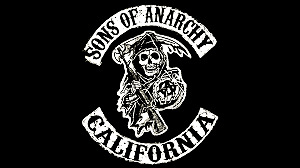Sons of anarchy dvds seasons 1-4 for sale
