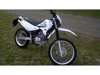 pick up only 125cc sinnis