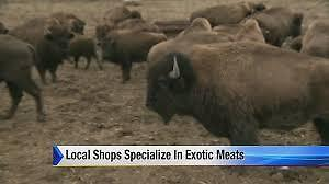 Exotic Meat Shop For Sale