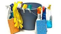 Professional Bonded/Insured Cleaning Services