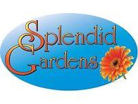 Splendid Gardens Maintenance & Pressure Washing Service