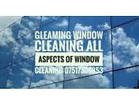 Gleaming Window cleaning/ gutter Cleaning. Property maintenance