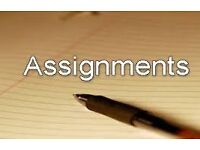 Assignment and dissertation by academic expert