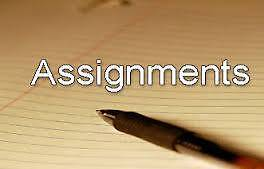 Assignment Help Bentley Canning Area Preview
