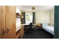Single Room to let in University of Birmingham accommodation