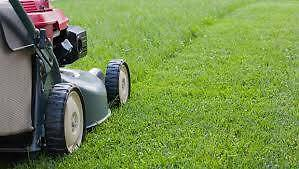 Al's Mowing Services Mawson Woden Valley Preview