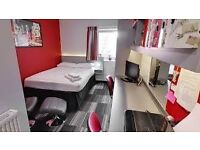 looking for someone to take over a double room in cambridge at the study inn