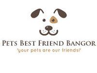 Pets Best Friend...Bangor, new, affordable, reliable pet sitters!