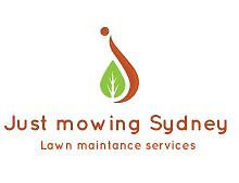 Just mowing Sydney lawn Mowing from $25 Liverpool Liverpool Area Preview