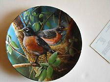Edwin M. Knowles Birds of your Garden Plate Collection
