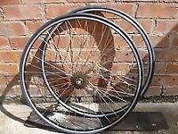 Wilkinson 700C x Wheels - Double Wall Weinmann XR18 Narrow Rims, Continental Grand Prix 4-Season