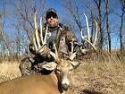 Guided Whitetail Hunt