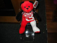 DALE EARNHARDT BEAR