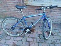 Apollo vertigo mountain bike 18 gears 19 inch frame 26 inch wheels