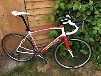 Specialized Secteur Elite 2012 Road Bike 56cm