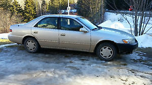 Updated! : Big Dog Discomfort!! 1997 Toyota Camry CE