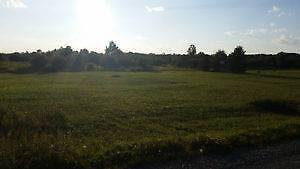 5 acre lot on Jaguar Drive, Timmins