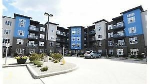 VIP condo for sale/rent in Harbour landing 2bed 2bath