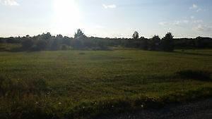 5 acre lot on Jaguar Drive, Timmins