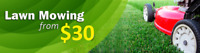 Weekly Lawn Cuts  - Fertilizer & Weed Control - Best Prices