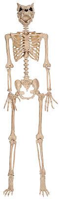 Werewolf Skeleton Poseable Prop Bones Lifesize Halloween Decoration